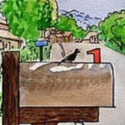 Bird On The Mailbox Sketchbook Project Down My Street Print by Irina Sztukowski