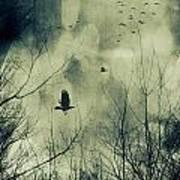 Birds In Flight Against A Dark Sky Print by Sandra Cunningham