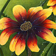 Blanket Flower Print by Trister Hosang