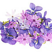 Bouquet Of Spring Flowers Print by Elena Elisseeva