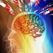 Brain Drug Print by Pasieka