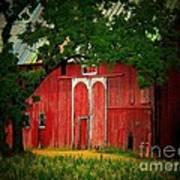Branch Over Barn Door Print by Joyce Kimble Smith