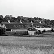 Brook Hill Dairy Farm Print by Jan Faul