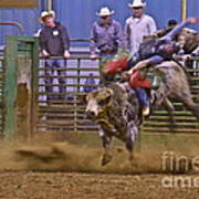 Bull Rider 1 Print by Sean Griffin