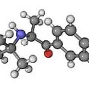 Bupropion Antidepressant Drug Molecule Print by Laguna Design