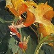 Canna Print by Elizabeth Taft