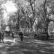Central Park Mall In Black And White Print by Rob Hans