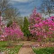 Cheekwood Gardens Print by Charles Warren