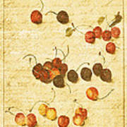 Cherries Print by Bonnie Bruno