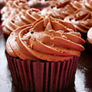 Chocolate Cupcakes Print by Jane Rix