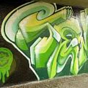 City Sponsored And Approved Graffiti Print by Bill Hatcher