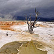 Clearing Storm At Mammoth Hot Springs Print by Photo by Mark Willocks