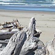 Coastal Driftwood Art Prints Blue Waves Ocean Print by Baslee Troutman