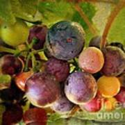 Colors Of Wine Print by Kevin Moore