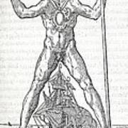 Colossus Of Rhodes, 16th Century Artwork Print by Middle Temple Library