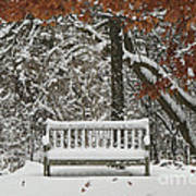 Come Sit Awhile Print by Inspired Nature Photography Fine Art Photography