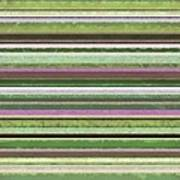 Comfortable Stripes Lv Print by Michelle Calkins