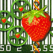 Conceptual Image Of Genetically-engineered Fruit Print by Victor Habbick Visions