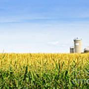Corn Field With Silos Print by Elena Elisseeva