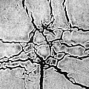 Cracks Print by Gerard Hermand