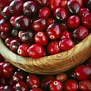 Cranberries In A Bowl Print by Elena Elisseeva