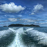 Cruising Print by Adrian Evans