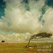 Daisy Spots A Tree Print by Paul Grand