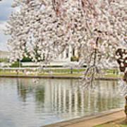 Digital Liquid - Cherry Blossoms Washington Dc 6 Print by Metro DC Photography