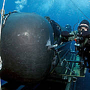 Divers Prepare To Launch A Seal Print by Stocktrek Images