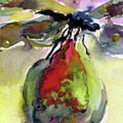Dragonfly On Flower Bud Watercolor Print by Ginette Callaway