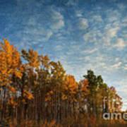 Dressed In Autumn Colors Print by Priska Wettstein