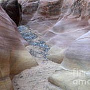 Dry Creek Bed 3 Print by Bob Christopher