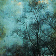 Evening Sky Print by Judi Bagwell