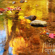 Fall Color In Stream Print by Charline Xia