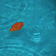 Fall... Print by Mario Celzner