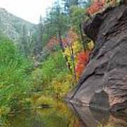 Fall Peeks From Behind The Rocks Print by Heather Kirk