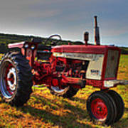 Farmall Tractor In The Sunlight Print by Andrew Pacheco