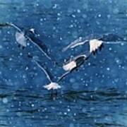 Flock  Print by Debra  Miller