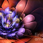 Floral Flame Print by John Edwards