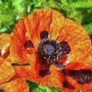 Flower - Poppy - Orange Poppies  Print by Mike Savad