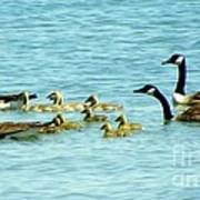 Follow The Leader Print by Karen Wiles