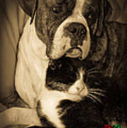 Friendship Is The Greatest Gift Of All Greeting Print by DigiArt Diaries by Vicky B Fuller