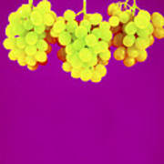 Grapes Print by Johnny Greig