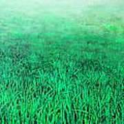 Green Grass Print by Lolita Bronzini