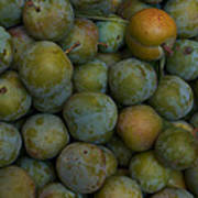 Green Plums Fill A Bin Outside A Local Print by Heather Perry
