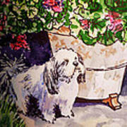 Guarding Geranium Sketchbook Project Down My Street Print by Irina Sztukowski