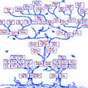 Guggenheim Family Tree Print by Science Source