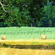 Hay Landscape Print by France Laliberte