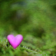 Heart In Moss Print by Alexandre Fundone