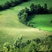 Hedged Farmland Print by Photo Marylise Doctrinal
